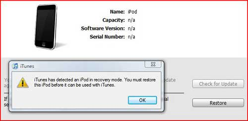 restore ipod in dfu mode